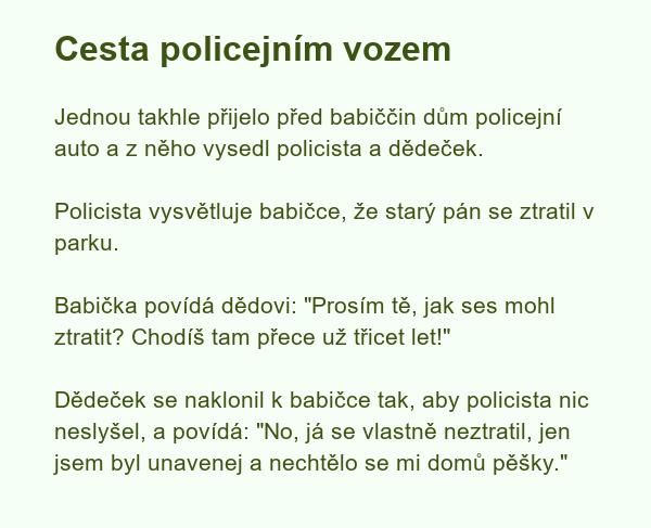 Cesta policejním vozem